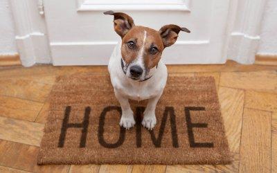 Hausverkauf: 3 Tipps für die Besichtigung
